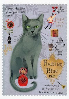 Russian Blue cat / Cat breeds / Postcards / Postallove - postcards made with love Manx Kittens For Sale, Cute Cats And Kittens, I Love Cats, Funny Kitties, Pet Cats, Russian Blue Kitten, Cat Anatomy, Anatomy Art, Cat Fountain