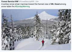 Snow lovers patiently waited the opening of Oregon's high country playgrounds this Thanksgiving weekend and were rewarded with enviable imagery. Here's a round up of photogenic Twitter and Instagram posts.