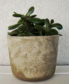 Maceta de cemento natural