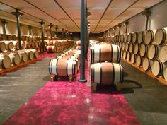Tenuta dell'Ornellaia- famous for their incredible Super Tuscans.  Love that hand painted floor!