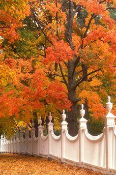 Autumn in Bennington, Vermont
