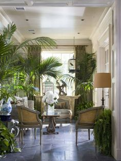 Jowvfrench tradiçional...ditch the ferns keep the potted palms. Add a gold papered lamp shade ...less loomy more come have tea darling