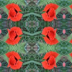 poppy_red fabric by anino on Spoonflower - custom fabric