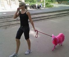 Here is Little Skinny Miss Muffett with walking her pink sheep.