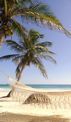 #Jetsetter Daily Moment of Zen: Las Ranitas Eco-Boutique Hotel in Tulum, #Mexico