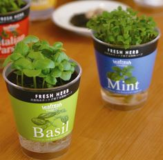 """New Kits with Edibile Flowers and Herbs!                Leafresh are easy to grow herbs and edible flower   cultivation kits nicely packaged in a self-watering pot. The Leafresh   self-watering pot takes the worry of regular watering, simplifying the   growing process as the plant drinks water from the bottom clear pot   through a fabric wick. The selection of herbs and edible flowers   encourages culinary exploration, and the pot is compact (4 3/4"""" H x 3   3/4"""" Diameter) enough for the…"""