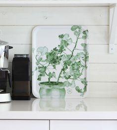 Green Geranium on a tray by Konstig Design Emma Sjödin #nordicdesigncollective #konstigdesign #emmasjodin #greengeranium #pelargon #pottedplant #pottedflower #flower #tray #kitchen #serve #servingtray #homedecor #interiordesign