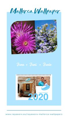 Hola Junio • Hallo Juni • Hello June Flower Power 🌸💮💠🏵️🌼 Mallorca wallpaper by Rayaworx Santanyí June Flower, Hello June, Balearic Islands, Mediterranean Sea, Beautiful Islands, Where To Go, Flower Power, Travel Inspiration, Wallpaper