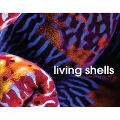 Living Shells (Hardcover) http://www.amazon.com/dp/1571975098/?tag=wwwmoynulinfo-20 1571975098