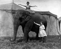 Circus Performers with elephant. Roaring Twenties, The Twenties, Water For Elephants, Circus Performers, Vintage Circus, Sideshow, Vintage Beauty, Vintage Photos, Folk