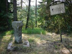 Die Gruber Docke der schönste Dockenstein in Thüringen.  Docken oder auch Dockensteine werden Steinsäulen genannt die vorwiegend in Thüringen zu finden sind. Alle sind quadratisch mit angefasten Kanten sie haben also 8 Ecken. Der obere Teil (Kopf) ist immer dicker als die in einem Steinsockel stehende Säule. Auf den Steinen sind keinerlei Symbole zu finden man kann also nicht genau sagen ob sie christlichen Ursprungs sind. Es gibt aber Hinweise dass an diesen Säulen auch gebetet wurde daher…