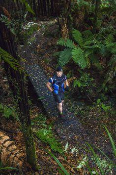 Steve Neary crossing a bridge on the Lake Waikaremoana trail Running Images, Rotorua New Zealand, Mead, Homeland, Hiking Boots, Trail, Bridge, Channel, Adventure