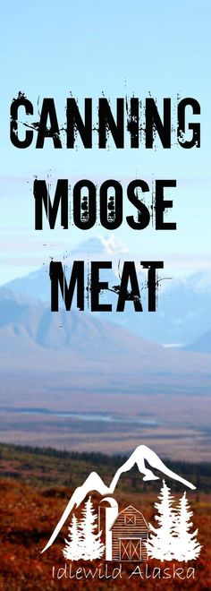 Don't be afraid of that pressure canner! Check out my recipe for canning moose meat! Perfect for winter stews and so much more! Moose Meat, Alaska Homestead, Pressure Canning Recipes, Water Bath Canning, Wild Game Recipes, True Food, Home Canning, Dehydrated Food, Venison