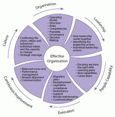 The diagram below describes a framework for change management in a shared service/BPO initiative. The segments in the wheel describe the various components that fit together in order to support and deliver the result.