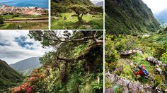 The Azores Islands, Portugal - A Mountain Bikers Paradise - via Pinkbike 21.02.2015 | The Azores Islands photo www.RavenEyePhotography.com