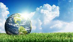 Plante uma nova maneira de ver o mundo. Preserve e recicle. A Nutriplan apoia essa ideia!
