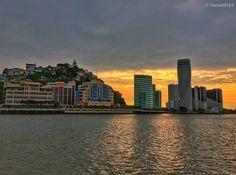 #Guayaquil al #atardecer!! Tarde de fotografía con mis alumnos! #Ecuador Foto con #Iphone  Vive tu mejor #aventura con #Rutaviva#TravelTheWorld  Los mejores #HOTELES DESTINOS y SERVICIOS encuéntralos en http://ift.tt/2nuTUfm Photo: @daniel0181 #EcuadorNow#ViajaPrimeroEcuador#FeelAgainInEcuador  #Ecuador#FamiliaViajeraEcuador  #allyouneedisecuador #travelblogger #mochileros #natgeotravel#SoClose #LikeNoWhereElse #amor  #AllInOnePlace#instatravel #TraveltheWorld #primerolacomunidad#World_Shots…
