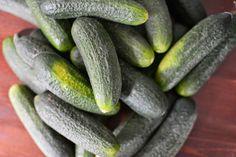 Skorpionin keittiössä: Mummon sipulikurkut Pickles, Cucumber, Vegetables, Food, Essen, Vegetable Recipes, Meals, Pickle, Yemek