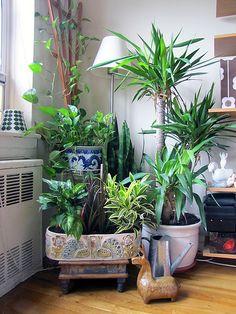 planter by Dancing Kangaroo, via Flickr