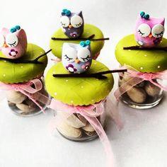 minik sürprizler için küçük kavanozlar / little surprises owl jars / handmade gifts