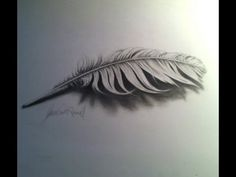 Drawing a 3D Feather