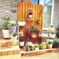 Beautiful Gardens, Arch, Outdoor Structures, Plants, House, Gardening, Happy, Home, Haus