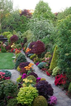 A variety of trees + colourful shrubs and flowers