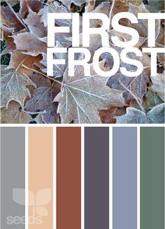 Palette:  First Frost  (Design Seeds)