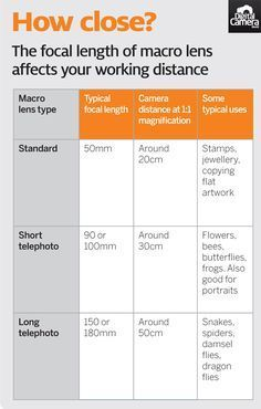 What is a macro lens minimum focus distance free cheat sheet Macro Photography Tips, Photography Cheat Sheets, Photography Tips For Beginners, Photoshop Photography, Photography Projects, Digital Photography, Close Camera, Digital Camera Lens, Digital Cameras