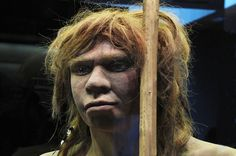 Scientists have long debated the question of when Neanderthals became extinct, and what kind of contact they might have had with modern humans. Now, an analysis of more than 40 archaeological sites provides the most definitive answer yet. Prehistoric Period, Prehistoric Man, Genetics Traits, Art Rupestre, Anthropologie, Early Humans, Human Evolution, Cryptozoology, Ancient Mysteries