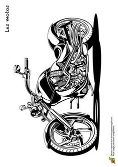 Une moto stylée et puissante à colorier Motorcycle Art, Bike Art, Motorcycle Design, Stickers Moto, Harley Davidson Decals, Trans Art, Free Adult Coloring, Cars Coloring Pages, Glass Engraving
