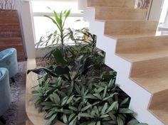 Um jardim de inverno embaixo da escada da sala