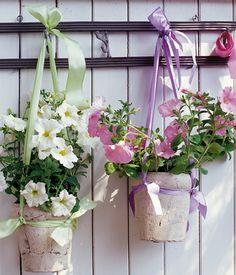 Töpfe mit Petunien und anderen Pflanzen mit hübschen Bändern an eine sonnige Wand hängen