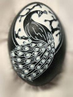 carved emu eggshell