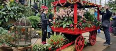 Kew Orchid Extravaganza 2017 - Pumpkin Beth Botanical Gardens, Orchids, The Good Place, Pumpkin, Events, Places, Beautiful, Design, Pumpkins