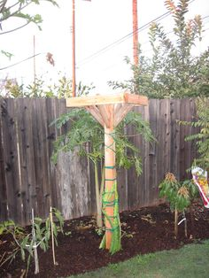 Dragon fruit trellis | Flickr - Photo Sharing!