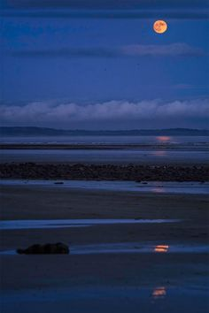 Blue moonrise over Murlough II (by Alsal Photography)