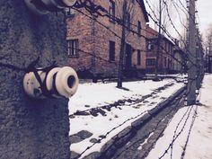 Auschwitz ( Krakow ) - Viaggio della memoria 2015