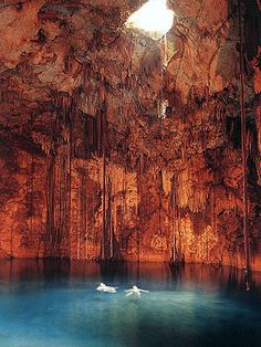 Cenotes spelunking in Playa del Carmin, Mexico was just like this, scary & full of beauty at the same time.