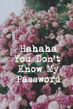 хахаха ты не знаешь мой пароль - Поиск в Google
