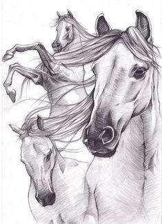 horse drawings   Sketch_works: various drawings