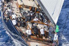 mistro:  Maxi Yacht Rolex Cup & Mini Maxi Rolex World...