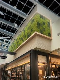 Office Interior Design, Office Interiors, Luxury Interior, Modern Interior, Wall Design, House Design, Moss Wall Art, Nature Plants, Contemporary Design