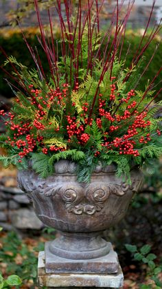A beautiful outdoor container can be created with items you collect from the great outdoors! Here are flowering shrubs which offer beauty in the warmer months, yet lend a hand with winter decorations too!