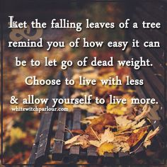 let go, autumn, witch, magick, minimalism, less if more, release stress, anxiety, anger, jealousy, enchanted, spiritual, inspiration, fall. www.whitewitchparlour.com