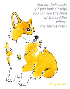 Where the fairies ride - cute Pembroke Welsh Corgi & the legend - © CorgieWorld