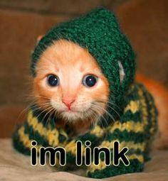 Kitten Link, go save Zelda.