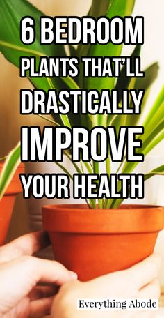 Best Indoor Plants, Outdoor Plants, Garden Plants, House Plants, Indoor Succulent Planter, Garden Privacy Screen, Household Plants, Inside Plants, Bedroom Plants