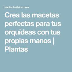 Crea las macetas perfectas para tus orquídeas con tus propias manos   Plantas