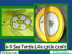 Sea Turtle Life Cycle Craft: we could use this idea for any cycle: water cycle, tadpole, butterfly...